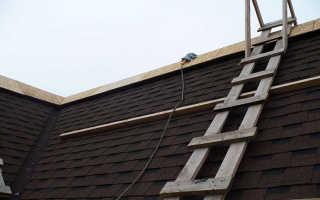 Назначение и установка лестницы для крыши