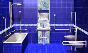 Поручни для инвалидов в ванную и туалет: безбарьерная среда в санузел, аппарель для унитаза