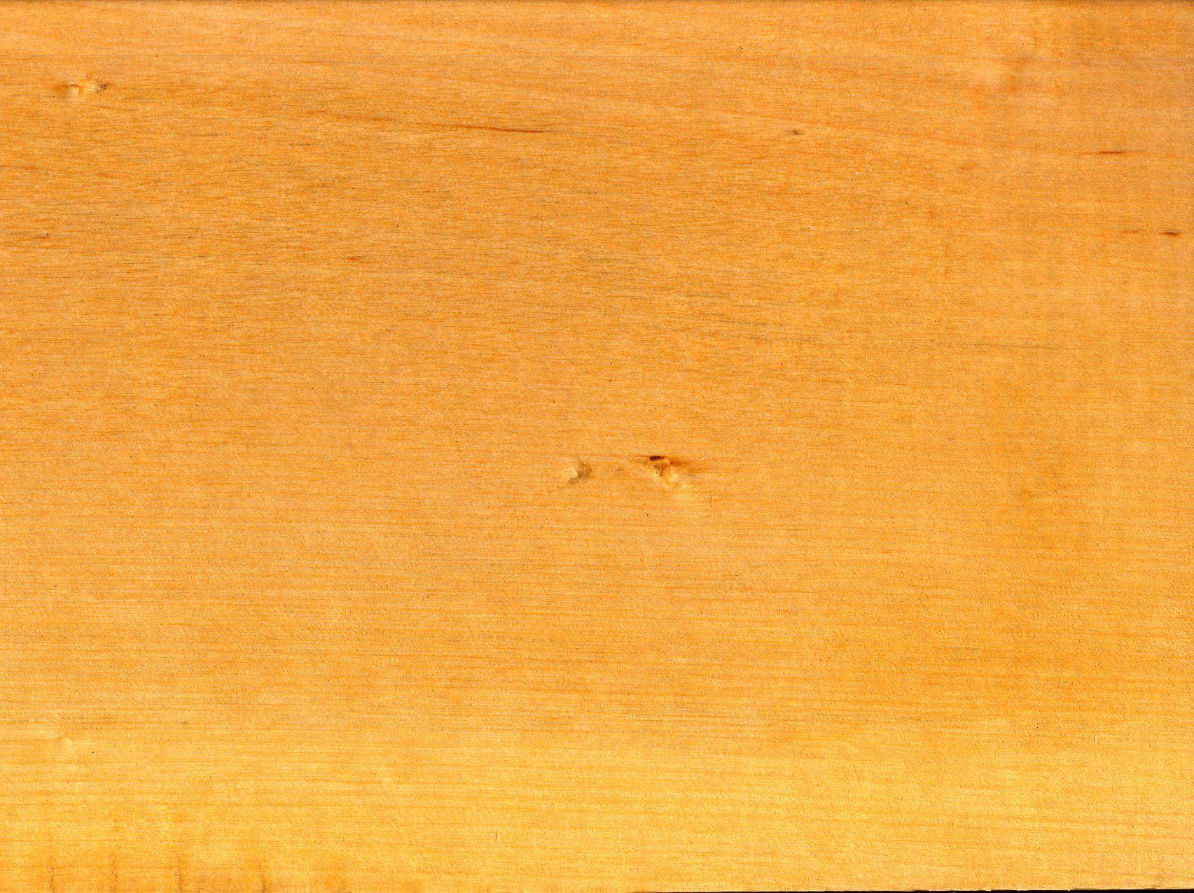 Цвет древесины берёзы
