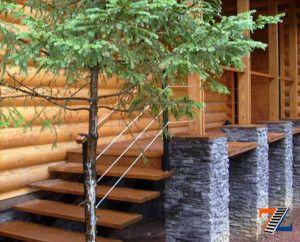 Дерево гармонично вписывается в общий стиль здания