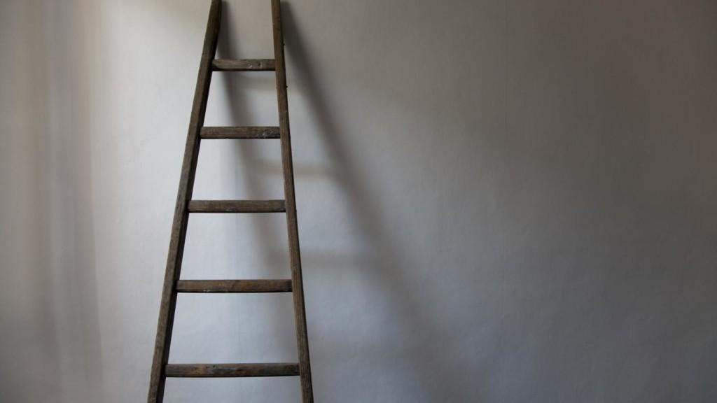 приставная лестница конус