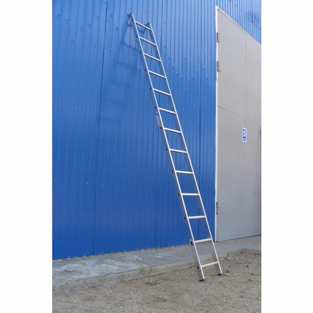 односекционная приставная лестница
