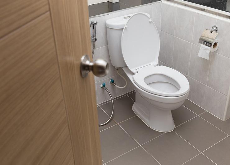 туалет_лестница_выбор