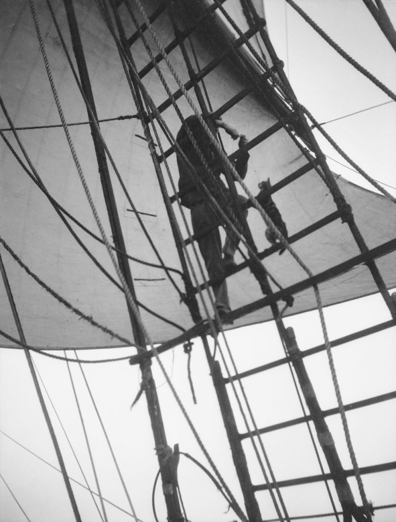 веревочные лестницы