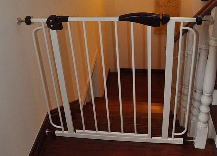ворота_лестница